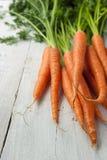 在白色背景的红萝卜 免版税库存照片