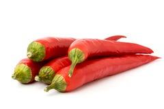 在白色背景的红辣椒,特写镜头 免版税库存照片