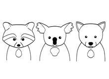 在白色背景的线艺术动物 设置一点浣熊、考拉和狼 库存例证