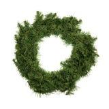 在白色背景的绿色圣诞节花圈 库存照片