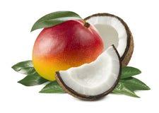 在白色背景的芒果整个椰子叶子 免版税库存照片
