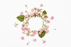 在白色背景的花卉圆的框架 平的位置,顶视图 免版税图库摄影