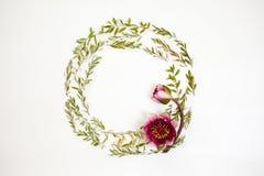 在白色背景的花卉圆的框架 平的位置,顶视图 Orna 图库摄影