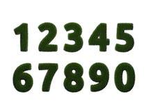 在白色背景的草数字 数字式例证 3d翻译 免版税图库摄影