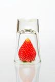 在白色背景的草莓 库存图片