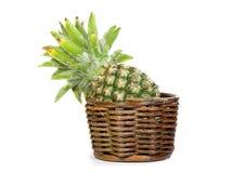 在白色背景的菠萝 免版税库存照片