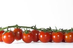 在白色背景的蕃茄和木头 库存照片