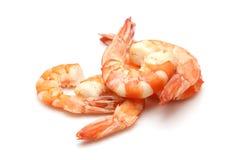 在白色背景的虾 免版税库存照片