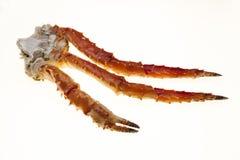 在白色背景的蟹腿特写镜头 远东螃蟹,纤巧 螃蟹群 免版税库存图片