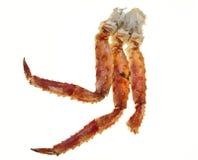 在白色背景的蟹腿特写镜头 远东螃蟹,纤巧 螃蟹群 免版税图库摄影