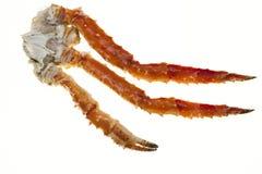 在白色背景的蟹腿特写镜头 远东螃蟹,纤巧 螃蟹群 免版税库存照片