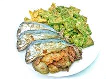 在白色背景的被烘烤的泰国鲭鱼 库存图片