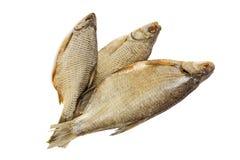 在白色背景的被盐溶的和干河鱼 免版税库存图片