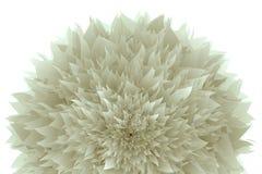 在白色背景的被隔绝的风格化柔和的轻的花 向量例证