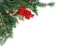 在白色背景的角落的圣诞节装饰 库存照片