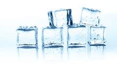 在白色背景的透明冰块小组用水下降 免版税库存照片
