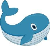 在白色背景的逗人喜爱的动画片鲸鱼 库存例证