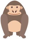 在白色背景的逗人喜爱的大猩猩 库存例证