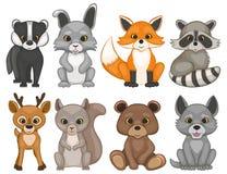 在白色背景的逗人喜爱的森林动物 套动画片森林地动物 免版税库存照片