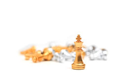 在白色背景的金子棋企业隐喻领导的 库存照片