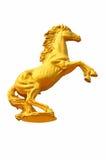 在白色背景的金黄马雕象 库存照片