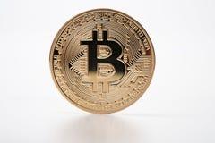 在白色背景的金黄bitcoin cryptocurrency 免版税库存图片