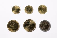 在白色背景的阿根廷硬币 库存图片