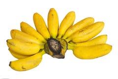 在白色背景的香蕉 免版税图库摄影