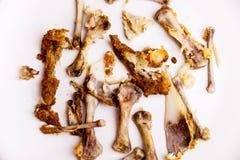 在白色背景的鸡翼残羹剩饭 在板材的鸡骨头 不健康的肉食物 快餐的概念 concep 免版税图库摄影