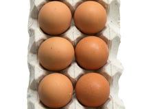 在白色背景的6个蛋泡沫盘区 免版税库存照片