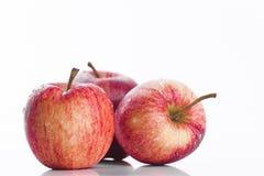在白色背景的水多的红色苹果 免版税库存图片