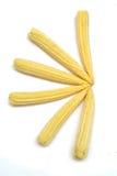 婴孩玉米 免版税库存图片