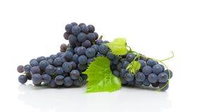 在白色背景的黑暗的葡萄和绿色叶子特写镜头 免版税库存图片