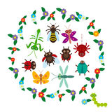 在白色背景的滑稽的昆虫蜘蛛蝴蝶蜻蜓螳螂甲虫黄蜂瓢虫 向量 免版税图库摄影