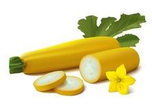 在白色背景的黄色南瓜夏南瓜 图库摄影