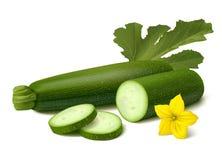 在白色背景的绿色夏南瓜 库存图片