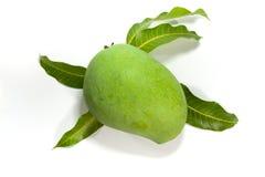 在白色背景的绿色芒果 库存照片