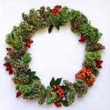 在白色背景的绿色花卉圆的花圈框架 平的位置,顶视图,看法从上面 秋天或冬天装饰 免版税库存照片
