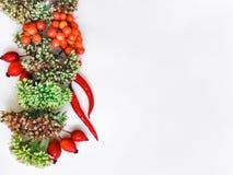 在白色背景的绿色花卉花圈框架 平的位置、顶视图、秋天或者冬天装饰 免版税库存照片