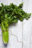 在白色背景的绿色芹菜 免版税图库摄影