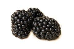 在白色背景的黑莓 免版税库存照片