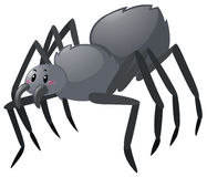在白色背景的黑蜘蛛 库存例证