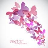 在白色背景的蝴蝶设计 免版税图库摄影