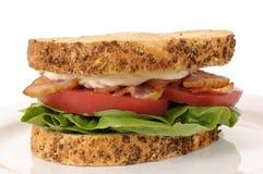在白色背景的BLT三明治 免版税库存照片