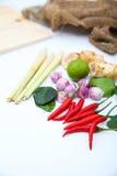 在白色背景的Tomyum泰国食物调味料成份 免版税图库摄影