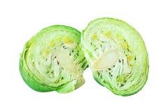 在白色背景被隔绝的关闭的两个绿色叶茂盛圆白菜一半,成熟白椰菜头cutted片断  免版税库存照片