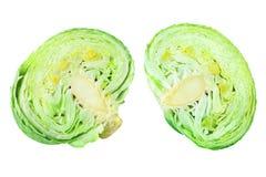 在白色背景被隔绝的关闭的两个绿色叶茂盛圆白菜一半,成熟白椰菜头cutted片断  图库摄影