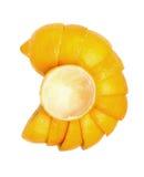 在白色背景设置的柠檬 图库摄影