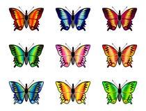在白色背景设置的被隔绝的蝴蝶 免版税库存照片