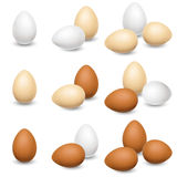 在白色背景设置的鸡蛋 库存照片